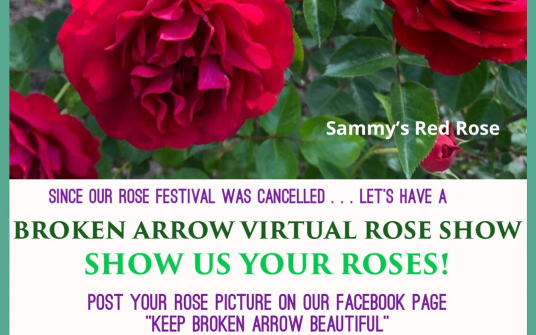 Broken Arrow Virtual Rose Show